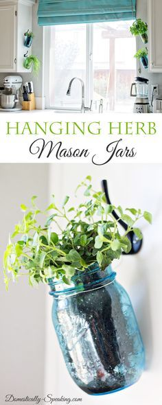 Hanging Fresh Herbs in Blue and Green Mason Jars  - perfect way to have an indoor herb garden in your kitchen!