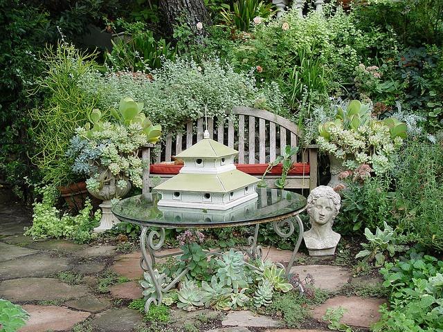 Heather Lenkin succulents in a cottage garden