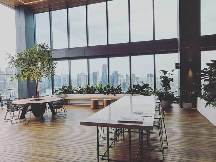 #docklandsmelb #melbourne #fytogreen #fytogreenaustralia #rooftop #roofgarden #hydroponics #plantsofinstagram #planteddesign