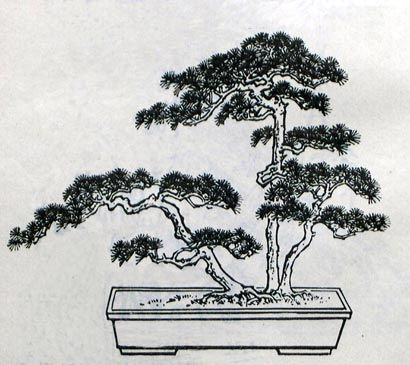 Penjing a chinese renaissance cool tattoos pinterest - Dessin arbre chinois ...