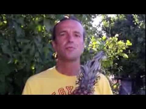 Το Φρούτο για τα Αρθριτικά... - The Fruit for Arthritis... - YouTube