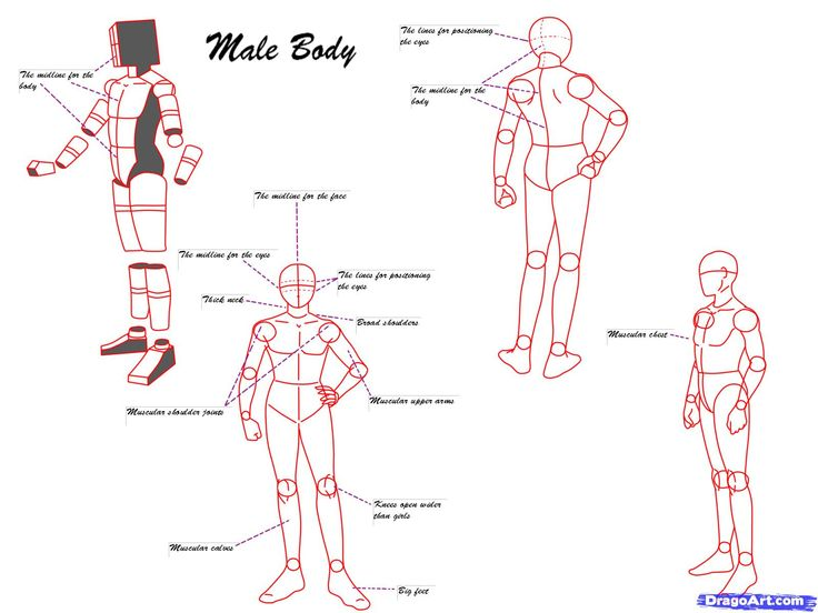 Anime poses step 6 make sure you draw the male bodies with anime poses step 6 make sure you draw the male bodies with muscular definition iwishicoulddrawstuff pinterest anime poses drawing reference and ccuart Gallery