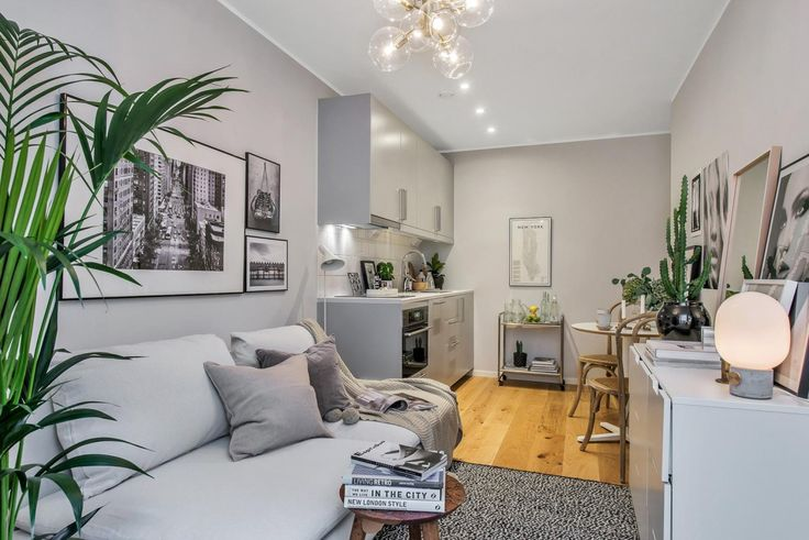 Tiny grey living room with open kitchen