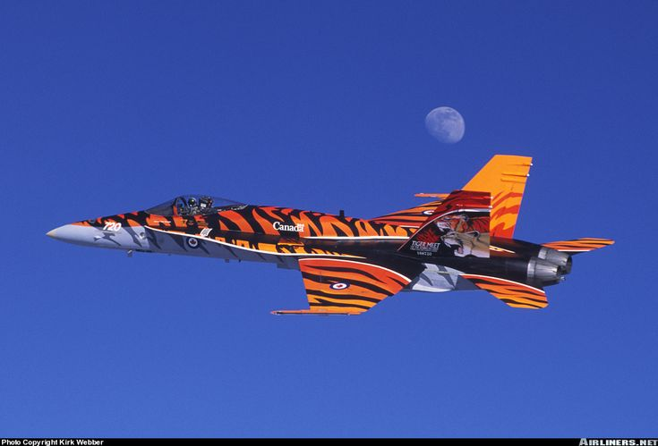 McDonnell Douglas CF-188A Hornet (CF-18A) Canadian CF-18 in Tiger Stripe