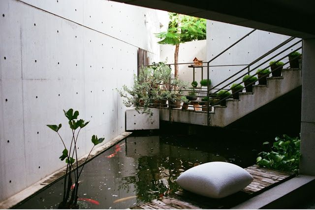 1000 ideas about indoor pond on pinterest koi fish pond for Koi pond builders mn