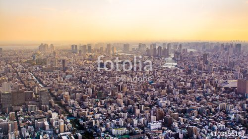 #Cityscape #Tokyo #sunset  #Japan #Asia #citycenter #landscape #panorama #city #capitalofJapan #eveninglight