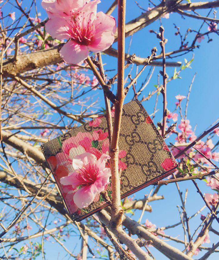 Gucci blooms print wallet