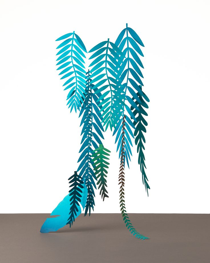 We papercrafted these jungle settings for an upcomming exhibition in Amsterdam.To recreate our love for tropical jungle adventures and magical flora.