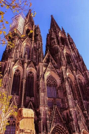 Cologne Cathedral in Fall season