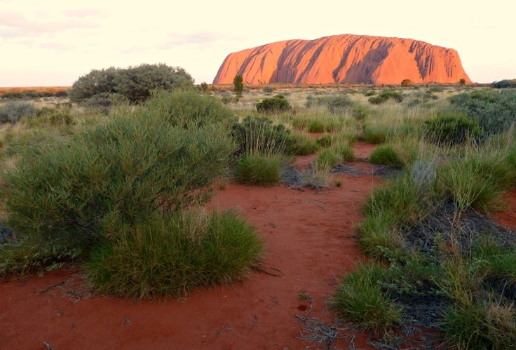 Uluru in the Red Centre