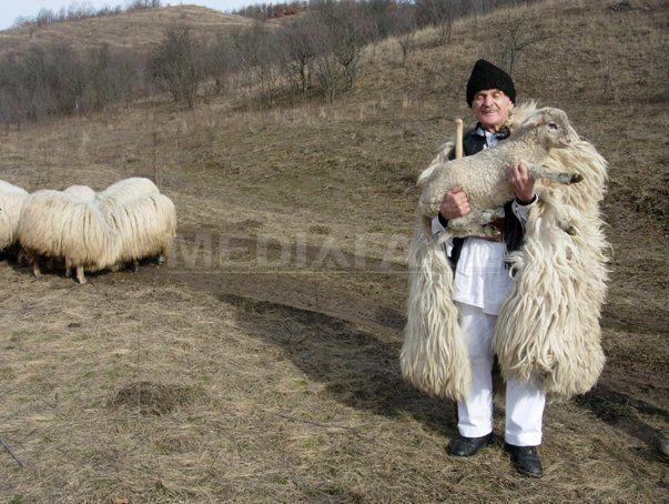 """La 96 de ani, a fost reangajat cioban de fostul patron:""""Numai de dragul oilor mi-a lungit Dumnezeu anii de viaţă"""" - FOTO - Mediafax"""