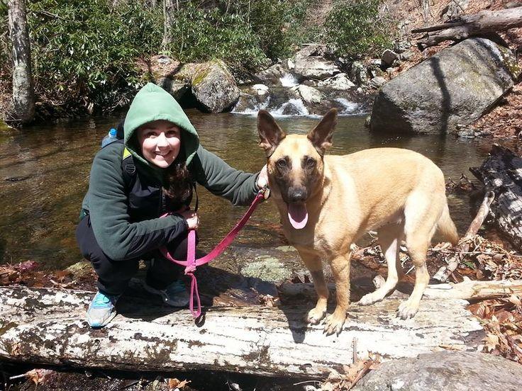 Vote Luna Swing in the Blue Ridge Outdoors Adventure Dog photo contest! Help Luna beast her bucket list by winning a photo contest!