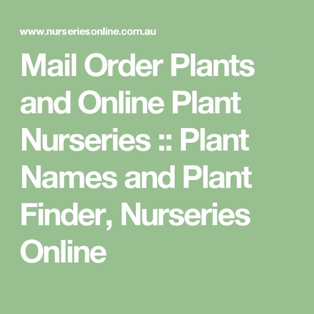 Mail Order Plants And Online Plant Nurseries Names Finder