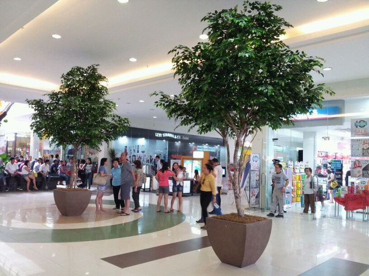 Artificial Ficus Trees @ The Park Mall in Cebu Island Philippines