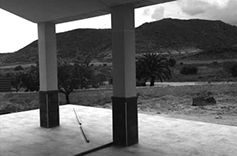 porch views to the almond trees garden. building site visit photograph