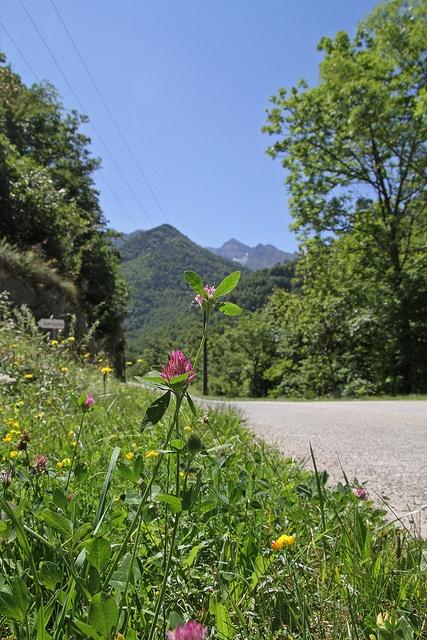 La vallée de Vicdessos, Ariège.