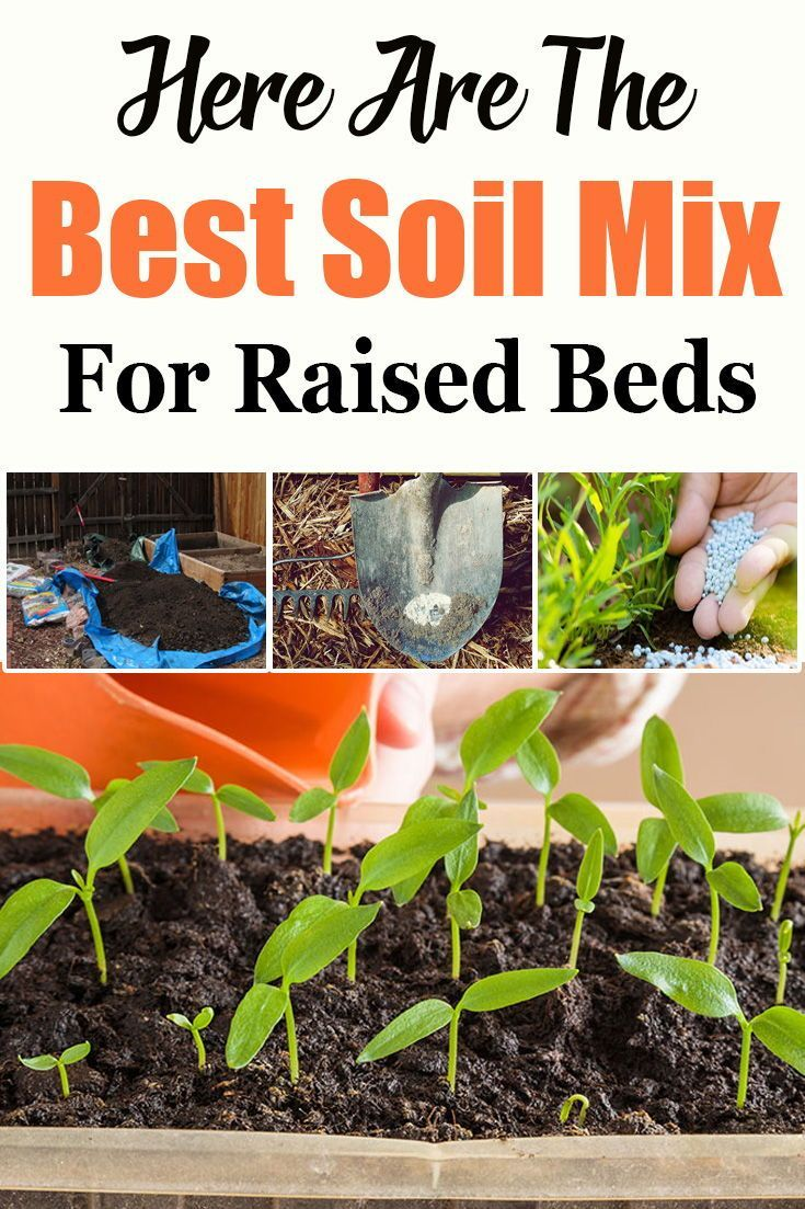 Here Are The Best Soil Mix For Raised Beds With Images Easy