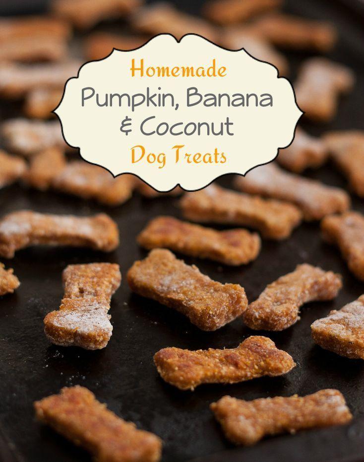 Treat your dog with homemade pumpkin, banana, & coconut dog treats!