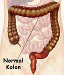 Normal Kolon