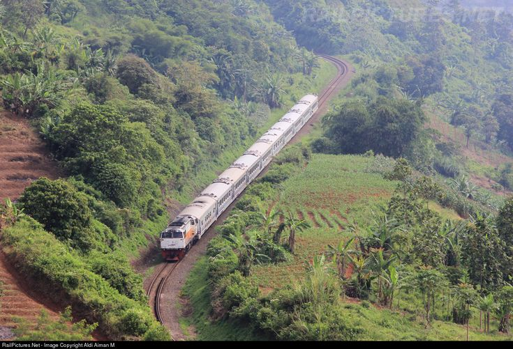 RailPictures.Net Photo: CC 206 25 PT Kereta Api (Persero) GE CM20EMP at Lebakjero, Indonesia by Aldi Aiman M