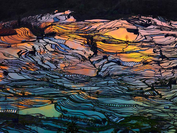 Hypnotizing Rice Fields That Look Like Broken Glass