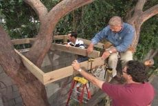 How to build a Tree House (great tutorial)-on my wish list this year!