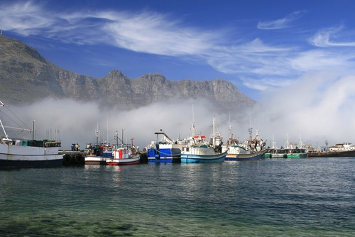 Hout Bay - South Africa