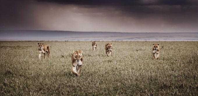 Klaus Tiedge5 pic on Design You Trust