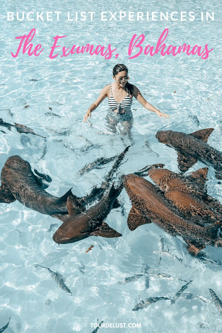 Bucket list experiences in The Exumas, Bahamas