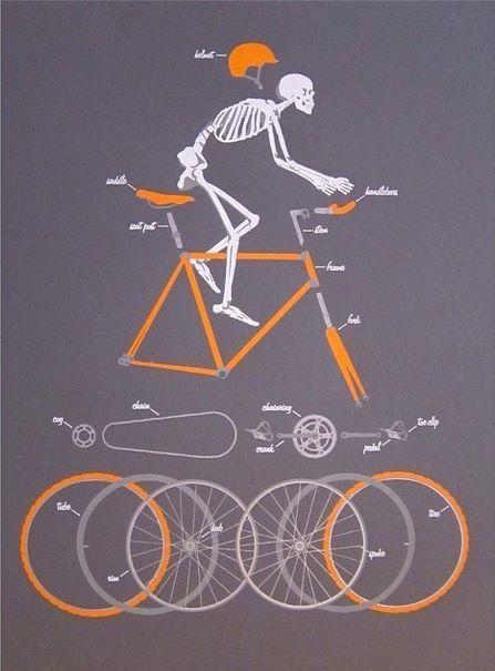 Bike X-Ray http://bike2power.com