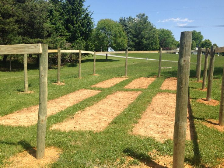 6x2 all nailed up, bays all tilled and ready to go...day 6
