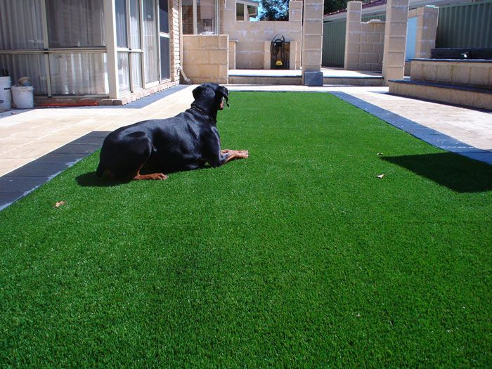 Getting in touch with us at Endless Turf 0438 305 225 is always worth whenever you are seeking to install artificial grass at reasonable cost. We have years of experience adding to the beauty of your premises. Get connected today.