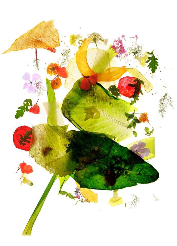 Il progetto fotografico di Alfonso Catalano Colortaste. Stampe FineArt su tela Canvas Monet Hahnemuhle by TRE60