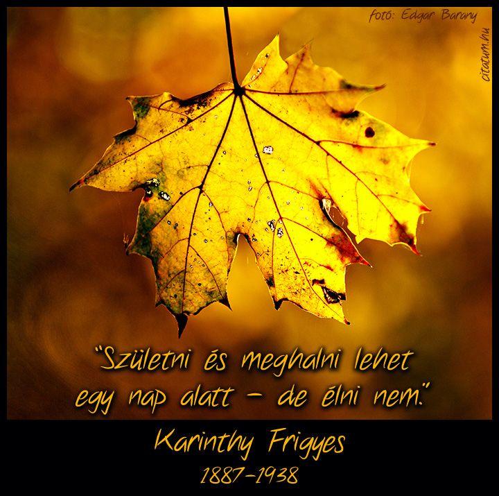 Karinthy Frigyes idézete az életről.
