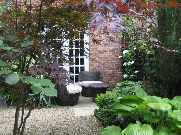 127 best images about my basement flat ideas on pinterest for Small shady courtyard ideas