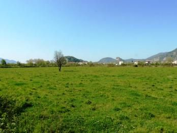 Property 380 Four plots of land, each 5000m2 in the ataturk area of Dalyan. FOR SALE £114,500 each