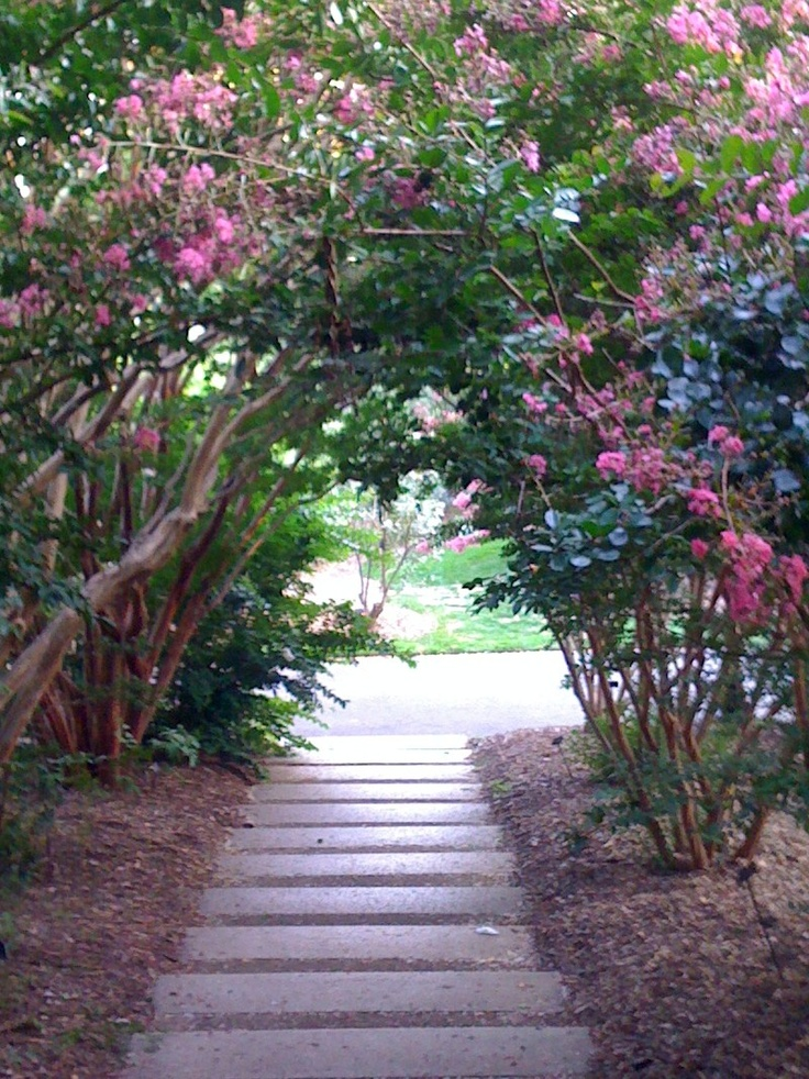 20 best Brooklyn Botanic Garden and Prospect Park images on ...