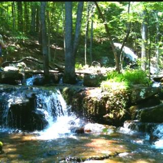 along an Arkansas trail: Favorit Place, Buckets Lists, Favorite Places, W Nder W Rld, Fav Rit Place, Arkansas Razorbacks, Arkansas Trail, Brooks Trout, Travel Buckets