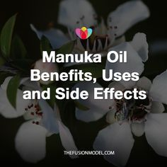 Manuka Oil Benefits, Uses and Side Effects