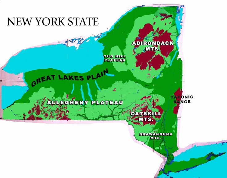 NY Topographic Map  New York State Topographic Map  50