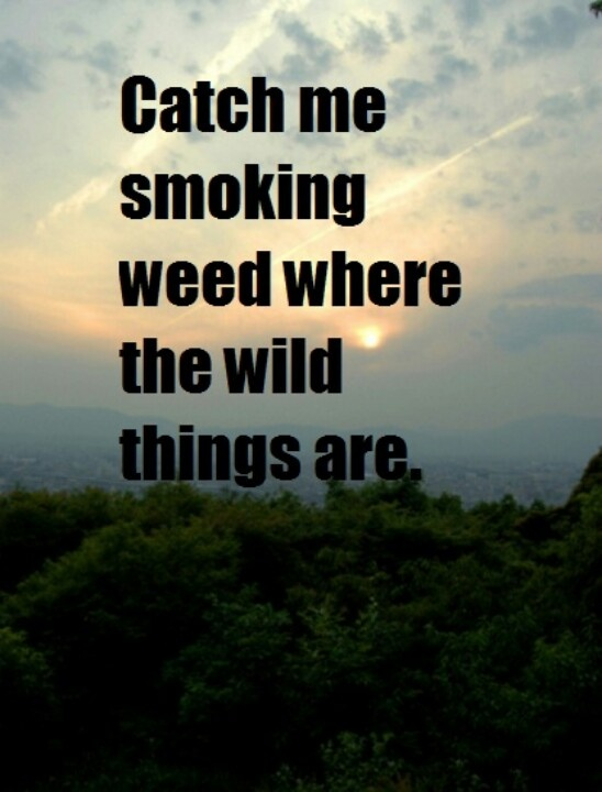 mac miller quotes about weed -#main