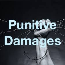 Asserting Punitive Damages (or Appealing the Decision to Allow for Punitive Damages) -