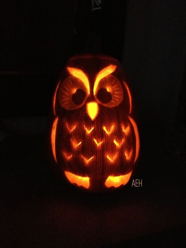 115 best must be halloween images on pinterest halloween for Simple owl pumpkin pattern