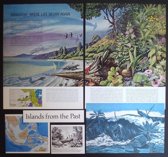 the krakatoa island essay Good footage of the 'new' krakatoa volcano erupting from the straits of sunda   short summary good footage of  krakatoa in eruption  making an island.