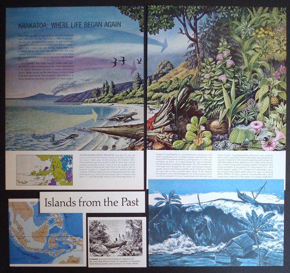 the krakatoa island essay Good footage of the 'new' krakatoa volcano erupting from the straits of sunda   short summary good footage of  krakatoa in eruption  making an island.