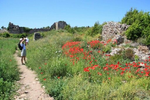 Side ruins with flowers blooming