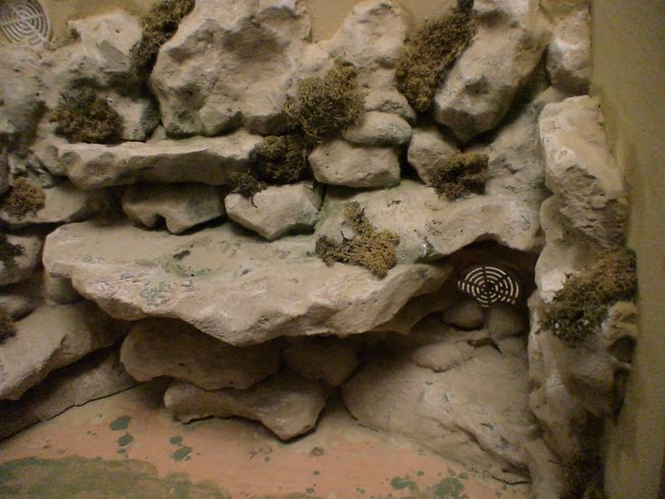 Naturalistic Snake Enclosures With Fake Walls - A How To Guide (Pic Heavy) - Reptile Forums