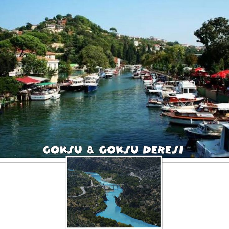 #göksu #göksuderesi #istanbul #istanbulbeauty #instacolours #turkey #turkeyproject  #turkeyrealestate #istanbulproperty #istanbulproject #istanbulapartment #istanbulhouse #istanbulvilla  #istanbulrealestate #vsco #عقارات_اسطنبول #عقارات_تركيا #عقارات #اسطنبول #مشاريع_اسطنبول #تركيا #استثمار_اسطنبول #بيوت_اسطنبول…