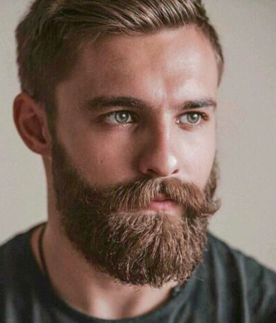 Phenomenal 1000 Ideas About Beard Styles On Pinterest Beards Awesome Short Hairstyles For Black Women Fulllsitofus