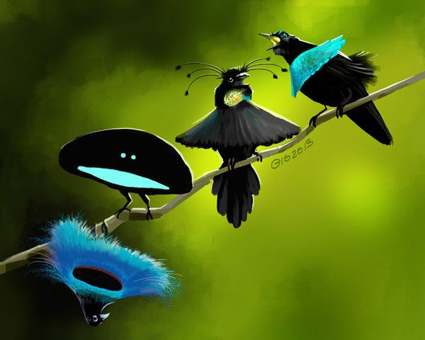 Paradise Birds by giovannag.deviantart.com on @deviantART